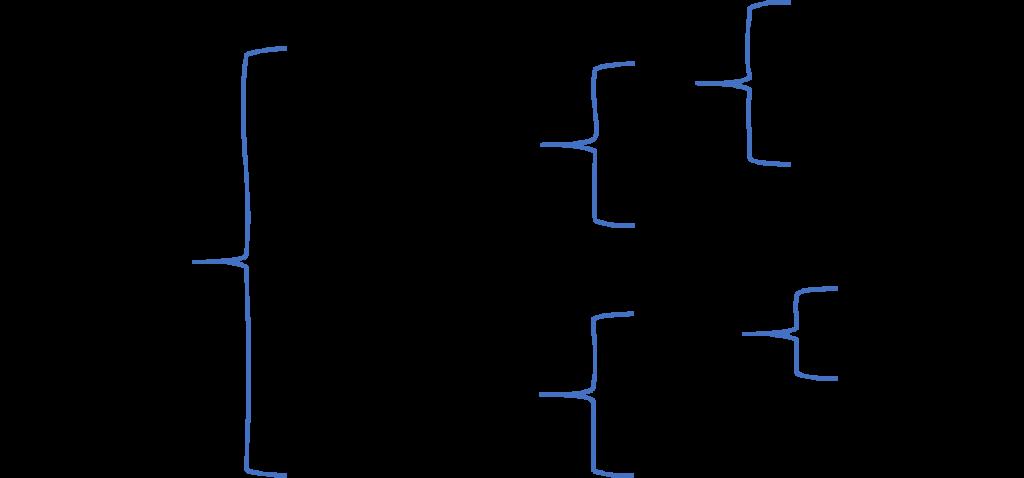 Divisiones del Sistema Nervioso. Elaboración propia a partir de Purves et al, 2007.