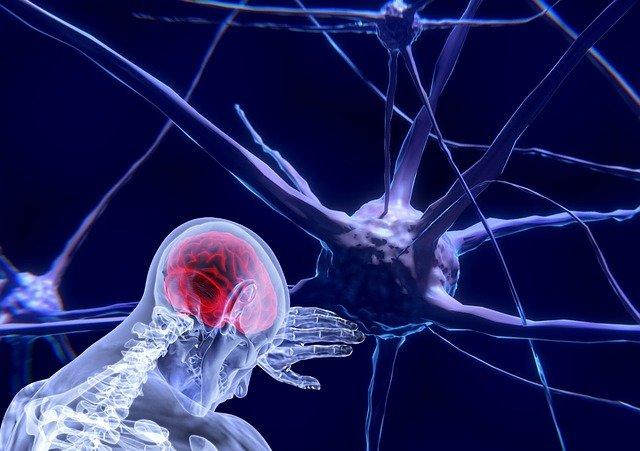 aplicación de la rehabilitación neuropsicológica Neuroclass