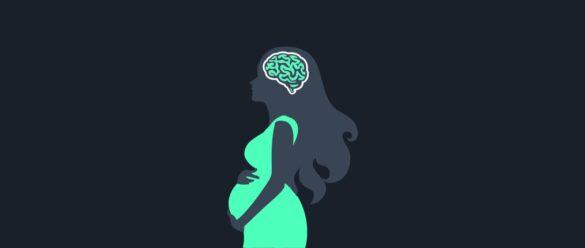 Portada - cambios cerebrales en el embarazo- NeuroClass