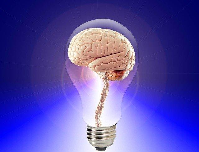 isquemia-y-hemorragia-cerebral-neuroclass